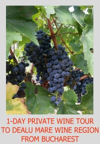 1-DAY PRIVATE WINE TOUR TO DEALU MARE FROM BUCHAREST