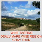 1-Day Wine Tasting Tour Dealu Mare Wine Region