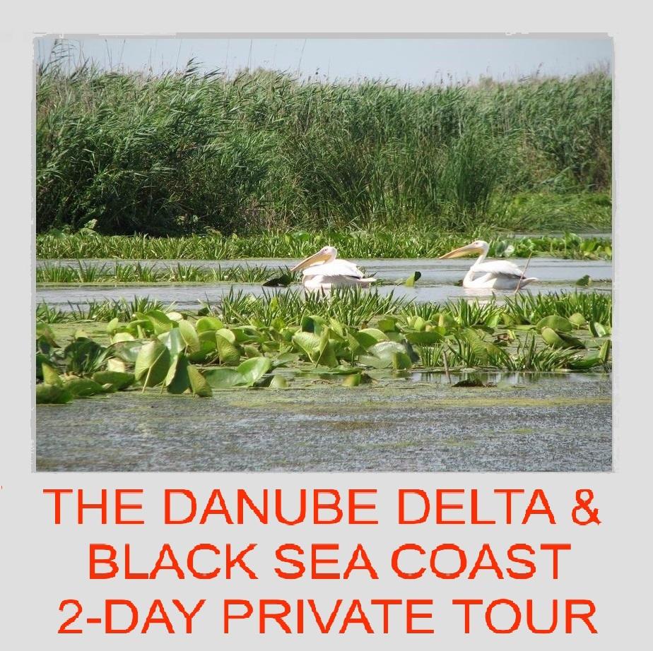 Private Tour Guides Phuket