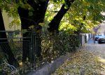 Characteristic Bucharest charm, Mantuleasaneighborhood