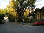 Armenian neighborhood, Bucharest