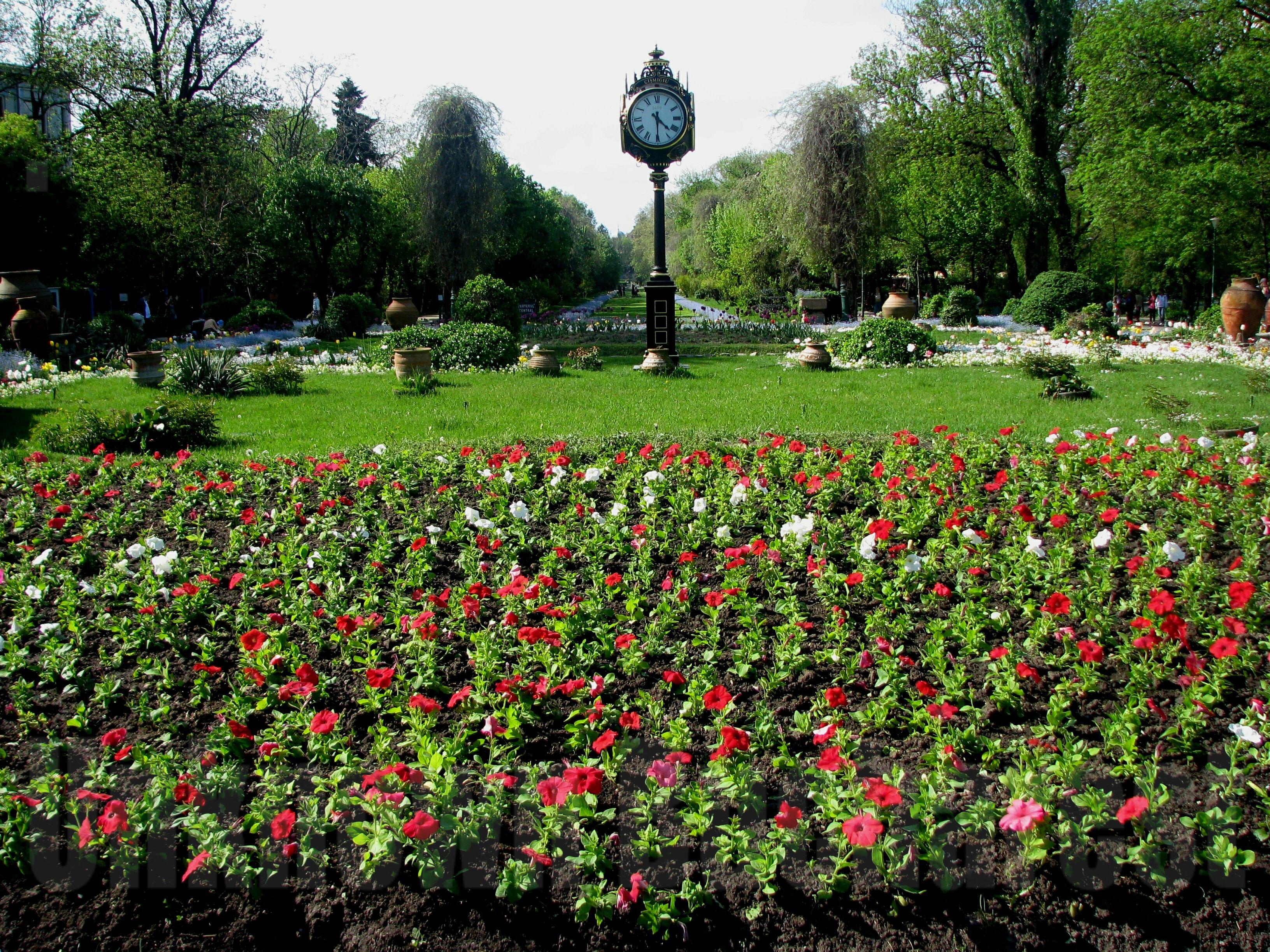 Central Landscape And Garden Drury : Cismigiu garden bucharest romania private tours by cris