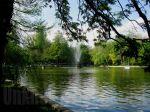 Cismigiu Garden, thelake