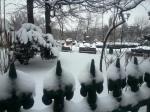 Winter View of Cismigiu Garden, centralBucharest