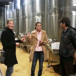 Learning about wine making at Lacerta Winery during Winery & Wine Tasting Tour, Sep 2013