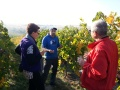 Vineyard visit during winery tour, Oct 2017