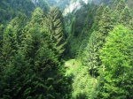 Cable car view of Bucegi mountains inMay