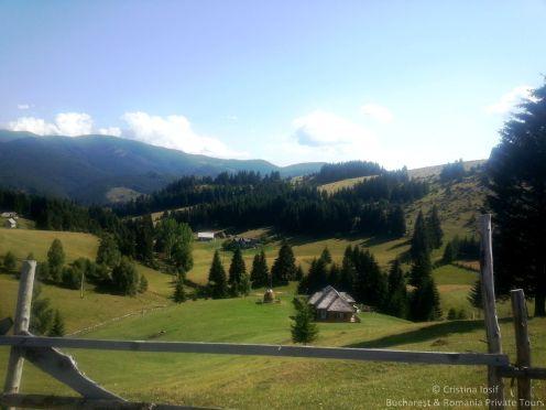 Mountain farms, Fundata village