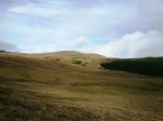 Bucegi highland meadows in September, RomanianCarpathians