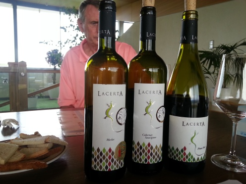 Wine tasting tour Lacerta Winery Romania