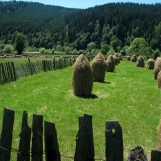 Farmland and haystacks in Bukovina, Romania