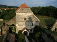 Cârța Cistercian Abbey and Surroundings Top View