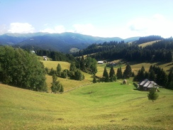 Mountain hay meadows, Fundata village, Carpathian Mountains