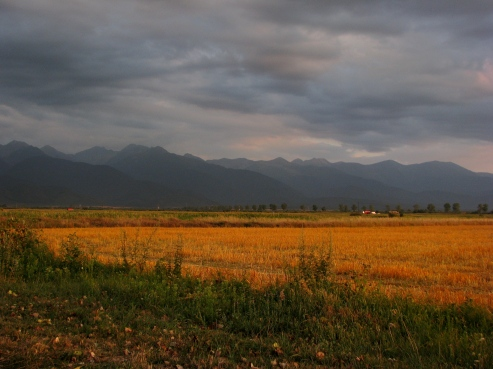 Transylvania scenery in August at sunset, view to Fagaras Mountains