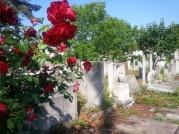 El cementerio judío, Bucarest