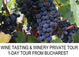 WINE TASTING WINERY TOUR FROM BUCHAREST