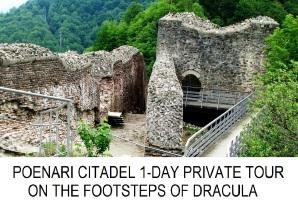 Poenari Citadel 1-day private tour