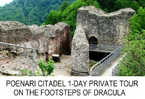 Poenari Citadel 1-day private tour