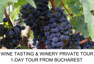 Wine tasting winery private tour from Bucharest
