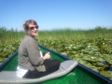 Among Waterlilies Danube Delta