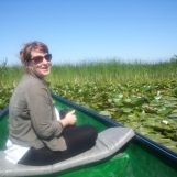 Among Waterlilies Danube Delta
