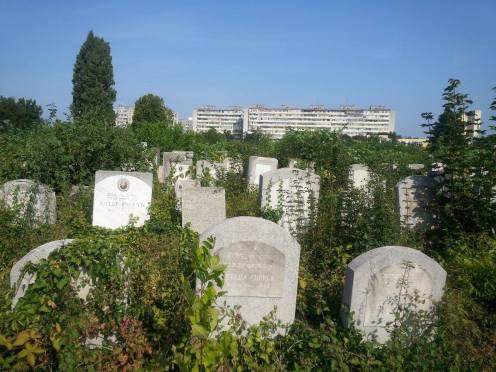 Gravestones Bucharest Jewish Cemetery Giurgiului