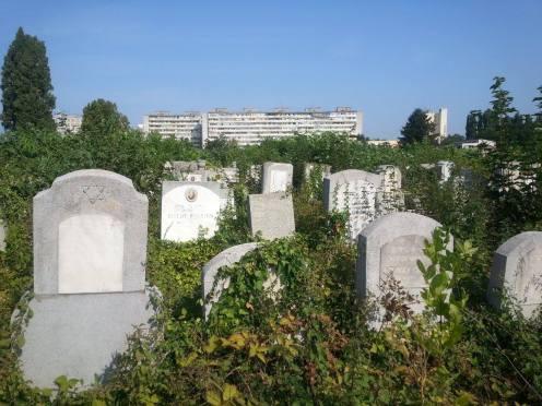 Jewish gravestones Giurgiului Jewish Cemetery Bucharest